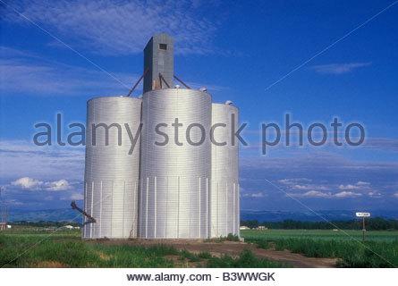 Getreidesilos in ein Feld, Walla Walla County, Bundesstaat Washington, USA - Stockfoto