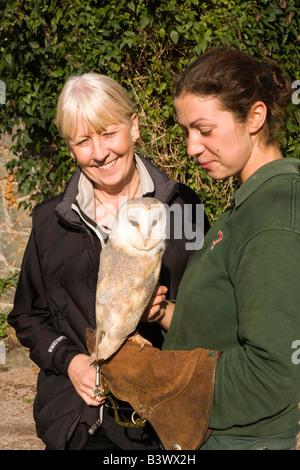 UK Wales Clwyd Colwyn Bay Welsh Mountain Zoo Besucher und Handler mit Schleiereule am arm - Stockfoto
