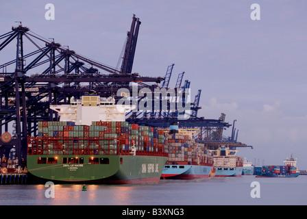 Trinity Quay im Hafen von Felixstowe, Großbritanniens größte Containerterminal, Suffolk, UK. - Stockfoto