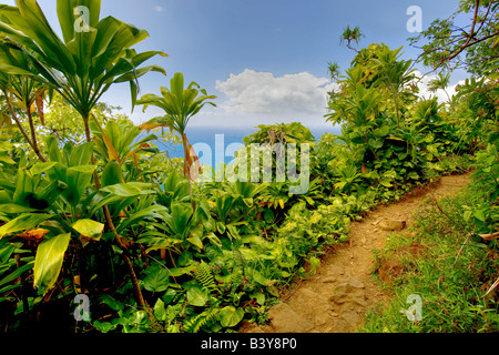 Napali Coast Trail bei Sonnenuntergang Kauai Hawaii Stockfoto