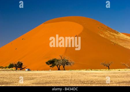 Düne 45 im Namib-Naukluft-Nationalpark, Namibia - Stockfoto