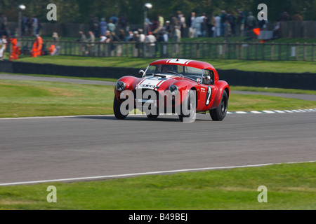 AC Cobra LeMans Coupé beim Goodwood Revival Meeting 2008 - Stockfoto