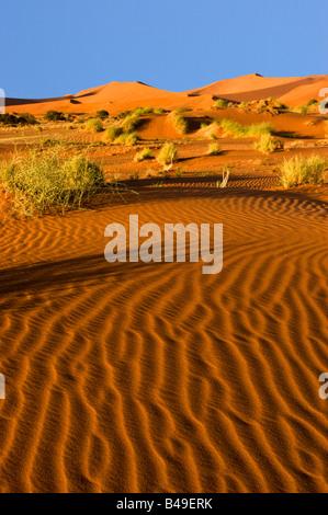 Sanddünen in der Namib-Naukluft National Park, Namibia - Stockfoto