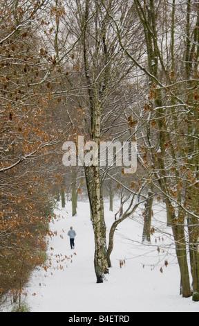 Winter im Wald - winter, Joggen - Stockfoto