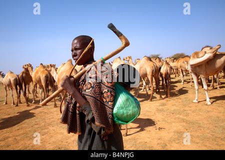 Ein Nomade führt eine Herde von Kamelen zu einem Wasserloch im nördlichen Somalia, Somaliland - Stockfoto