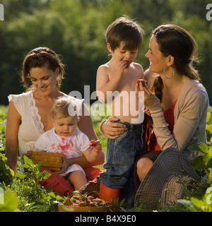 Mütter und Kinder Erdbeeren pflücken - Stockfoto