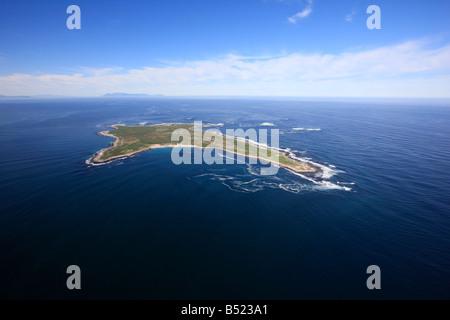 Dassen Island, Cape Town - Stockfoto
