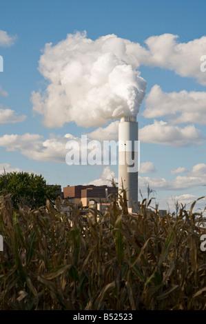 Fabrik Schornstein neben Maisfeld - Stockfoto