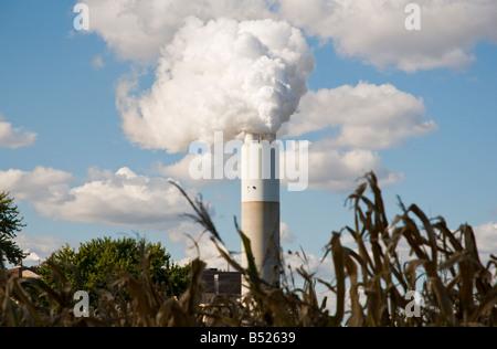Fabrik Schornstein & Maisstauden - Stockfoto