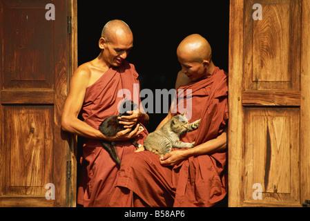 Mönche mit Katzen, Nga Hpe Kloster, Inle-See, Myanmar (Burma) - Stockfoto