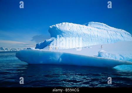 Adelie-Pinguine auf einem Eisberg in der Antarktis G Renner - Stockfoto