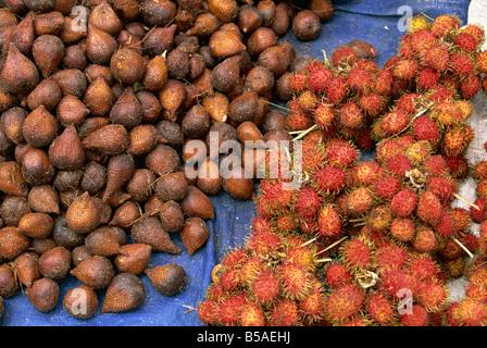 Salak und Rambutan, Schlangenleder und behaarte tropische Früchte in den Markt, Haranggaol, Lake Toba, Sumatra, - Stockfoto