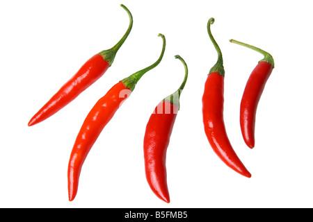 Rote Chilischoten Ausschnitt auf weißem Hintergrund