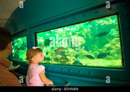 Vereinigte Staaten von Amerika Florida Miami Seaquarium Key Biscayne - Stockfoto