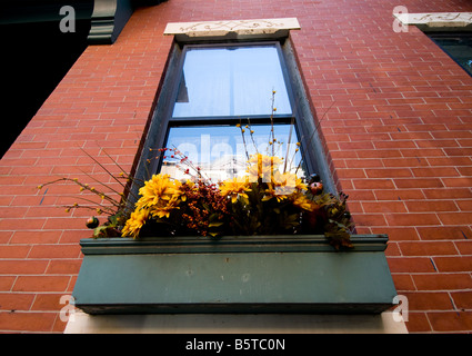 Blumenkasten auf der Fensterbank, Bunker Hill, Boston, New England USA - Stockfoto