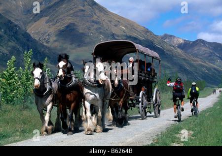 Mountainbiker, vorbei an einer Pferdekutsche Lake Wakatipu, Queenstown, Südinsel, Neuseeland - Stockfoto