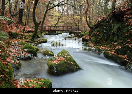 """Stockghyll Force"" Wasserfall oberhalb von Ambleside, Nationalpark Lake District, Cumbria im Herbst. - Stockfoto"