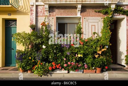 Haus Container Garten, Port Vendres, Pyrennees-Orientales, Frankreich - Stockfoto