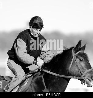 Pferd und Jockey (Schwarzweiß) - Stockfoto