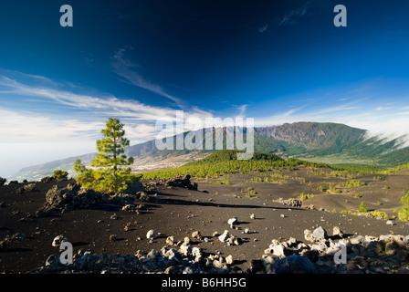 schöne Vulkanlandschaft in Kanaren La Palma el pilar - Stockfoto