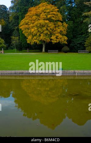 Teil des Gartens in Burton Agnes Hall, Driffield, East Yorkshire, UK im Herbst - Stockfoto