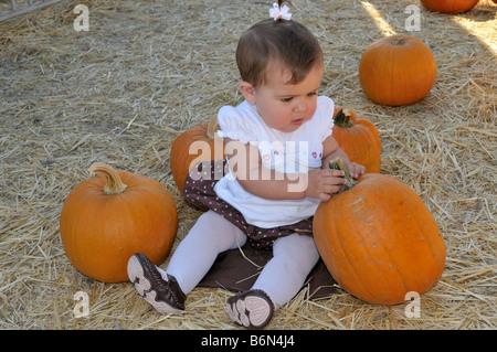 Babymädchen sitzen zwischen zwei Kürbisse - Stockfoto