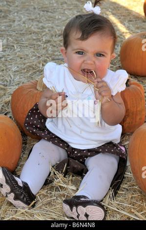 Amerikanische Babymädchen sitzen zwischen zwei Kürbisse - Stockfoto