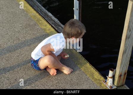 Auf der Suche nach Fischen oder Enten - Stockfoto