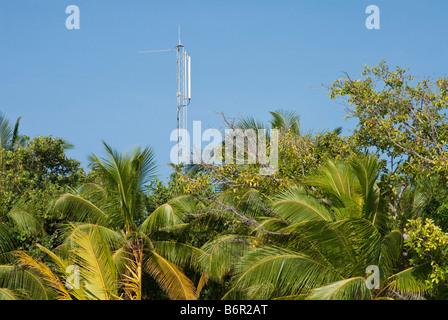 Handy-Mast erhebt sich über tropische Vegitation in Malediven - Stockfoto