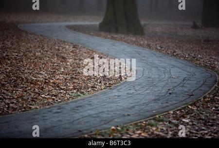 Ein Pfad führt durch den Wald in stilmäßig Park, Birmingham, UK - Stockfoto