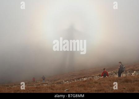 Brocken Bogen, Geist im Nebel - Stockfoto