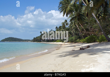 Blauer Himmel und weiße Wolken über Palmen auf Five Islands Strand Koh Samui Thailand - Stockfoto