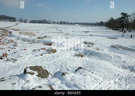Bradgate Park im Winter, Leicestershire, England, UK - Stockfoto