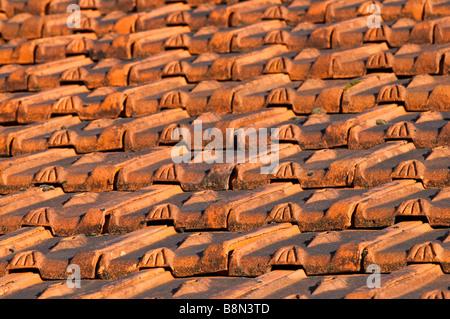... Dekorative Formteile Tondachziegel Auf Alten Haus, Frankreich.    Stockfoto
