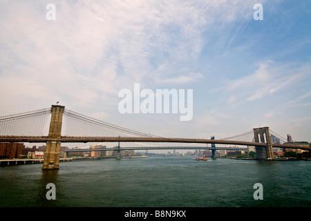 Die Brooklynbridge über den East river - Stockfoto