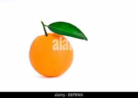 Orange mit Blatt isoliert auf weißem Hintergrund hautnah - Stockfoto