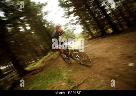 Mountainbike Rider bei Geschwindigkeit in Holz - Stockfoto