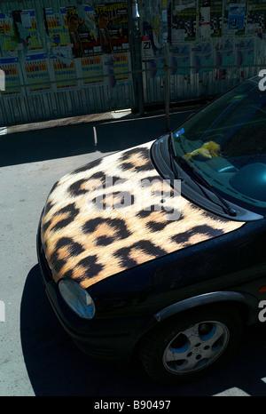 Ein Opel Corsa mit einem Leopardenfell Mütze einen Kleinwagen mit einem Leopard-Haut-Kapuze - Stockfoto