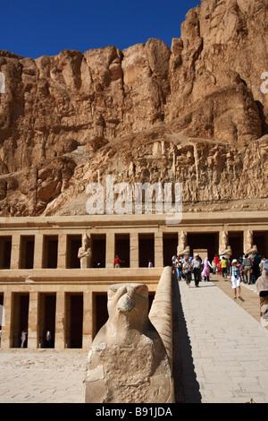 """Statue von Falcon Gott Horus an Rampe am Eingang zur Leichenhalle Tempel der Königin Hatshepsut 'Deir el-Bahri"""",""""West - Stockfoto"""