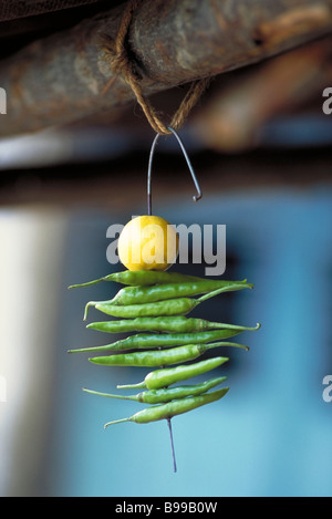 Indische Nimbu Mirchi Charme - Stockfoto