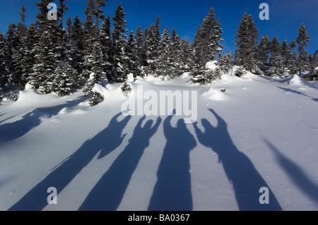 Der Schatten von vier Menschen auf dem Schnee - Stockfoto