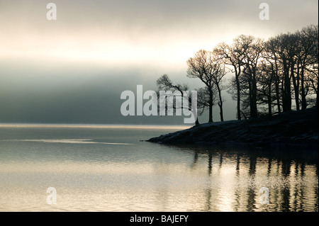 Bäume am Rande See Silhouette gegen Sonne bricht durch eine Morgennebel am Derwent Water im Lake District - Stockfoto