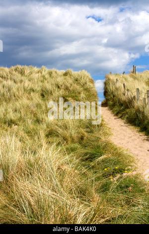 Blick auf Rasen und Sanddünen Cresswell Strand North East Coast Northumberland - Stockfoto