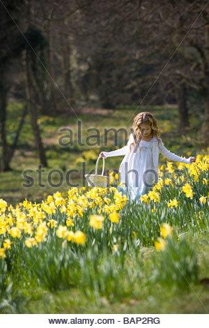 Ein junges Mädchen hält einen Korb zu Fuß durch ein Feld von Narzissen - Stockfoto