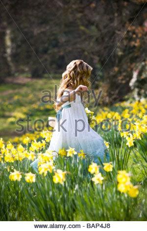Ein junges Mädchen zu Fuß durch ein Feld von Narzissen im Frühling - Stockfoto