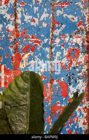 Alten Farbschichten bunte Peeling nach außen Ziegel, Wand eines ...