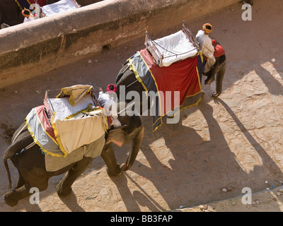 Zwei Mahouts Reiten auf ihren Elefanten im Amber Fort; Amber, Jaipur, Rajasthan, Indien - Stockfoto