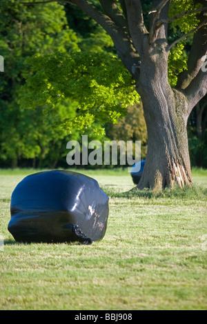 Umwickelte Silageballen In einem Feld - Stockfoto