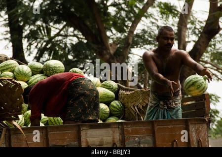 Haufen Wassermelone-Stall in einem Markt, Kerala, Indien - Stockfoto