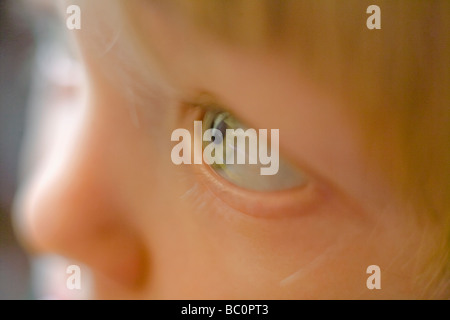 Extreme Nahaufnahme von einer 2 Jahre alten neugieriger Junge s grüne Auge - Stockfoto